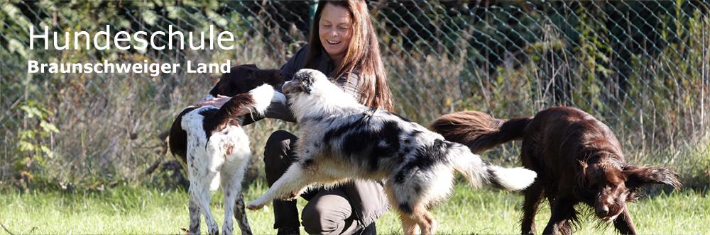 Hundeschule Braunschweiger Land